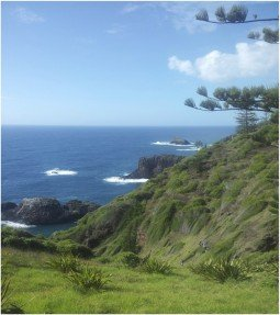 Norfolk Island Vista